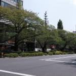 NCM_0282